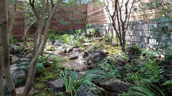 【完成】庭の奥から水場に向かって流れる小川
