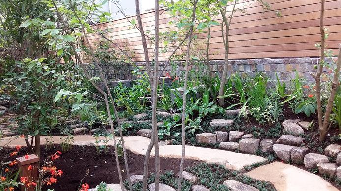 【完成】タマリュウやコケが庭に味わいを増す